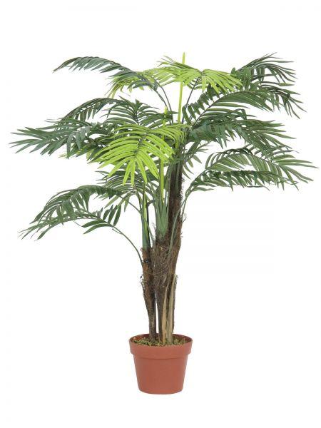 EUROPALMS Areca Palme, 110cm