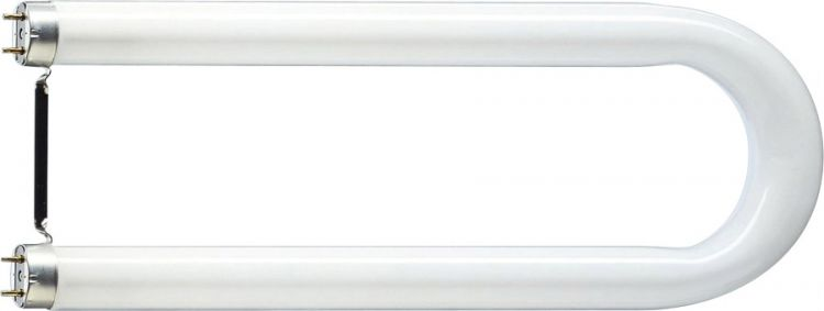 Philips TL-D U 36 W/840 coolwhite