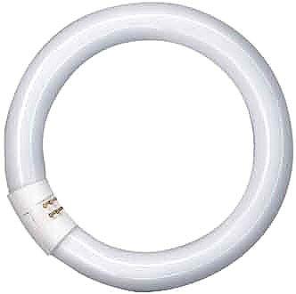 Osram Lumilux-Lampe L 32W/840 C