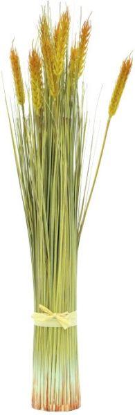 AlphaPlan-Artikel: EUROPALMS Weizenbündel, 60cm